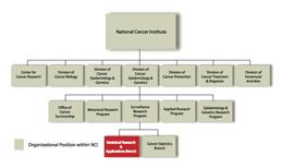 organizational-chart-2